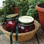 Vasetti di scalogno e uva agrodolci